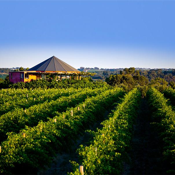 ぶどう ワイン オーストラリア