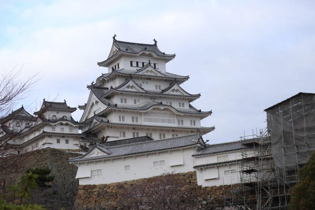 【お出かけスポット】姫路城の桜開花状況!(3月29日現在)