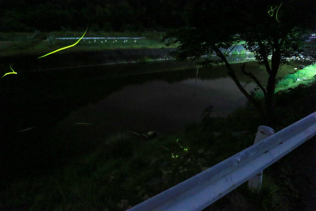 姫路市夢前町でホタルを鑑賞と撮影をしてきました【ホタル 蛍 ほたる 姫路 ヒメジ 夢前】
